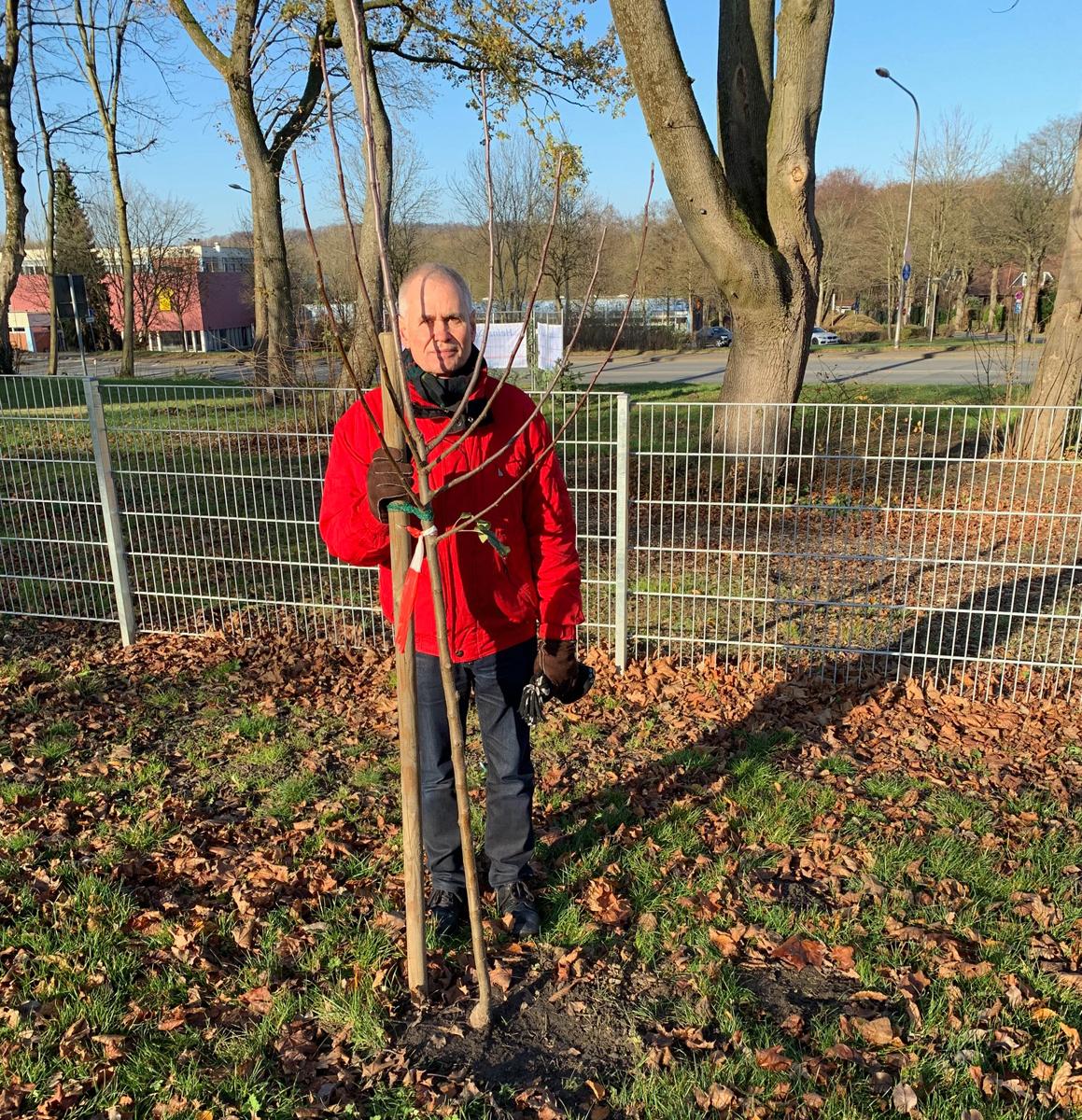 Ein Baum für jedes Grüne Ratsmandat…. z. B. am neuen Spielplatz an der HSS