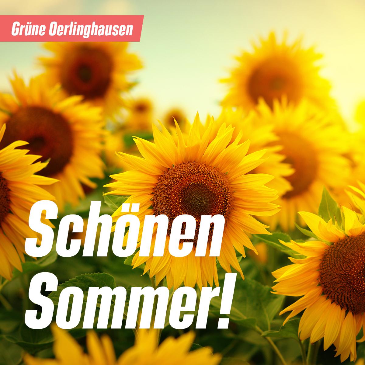 Schönen Sommer!